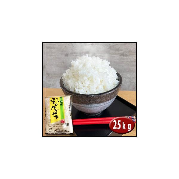 お米 25kg 埼玉県産 彩のかがやき 白米   契約農家直送米 29年産|rc-kaneko