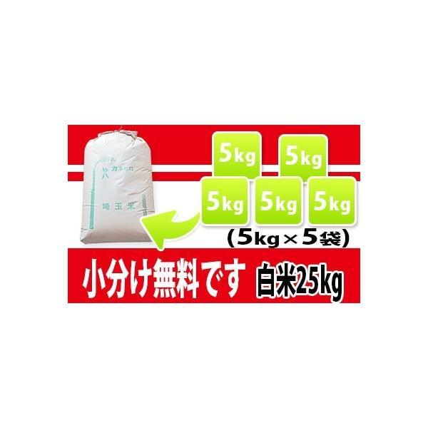 お米 25kg 埼玉県産 彩のかがやき 白米   契約農家直送米 29年産|rc-kaneko|02