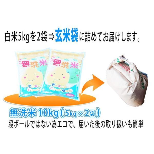 無洗米  お米 10kg(5kg×2袋)  米 あすつく 埼玉県産 30年産 送料無料|rc-kaneko|02