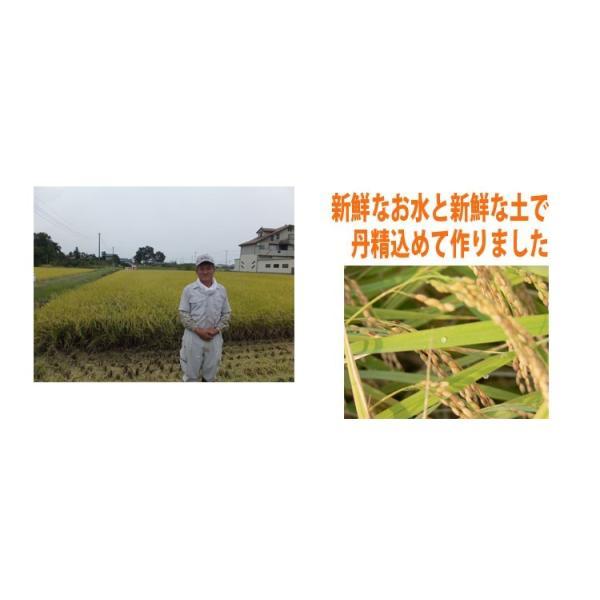無洗米  お米 10kg(5kg×2袋)  米 あすつく 埼玉県産 30年産 送料無料|rc-kaneko|07