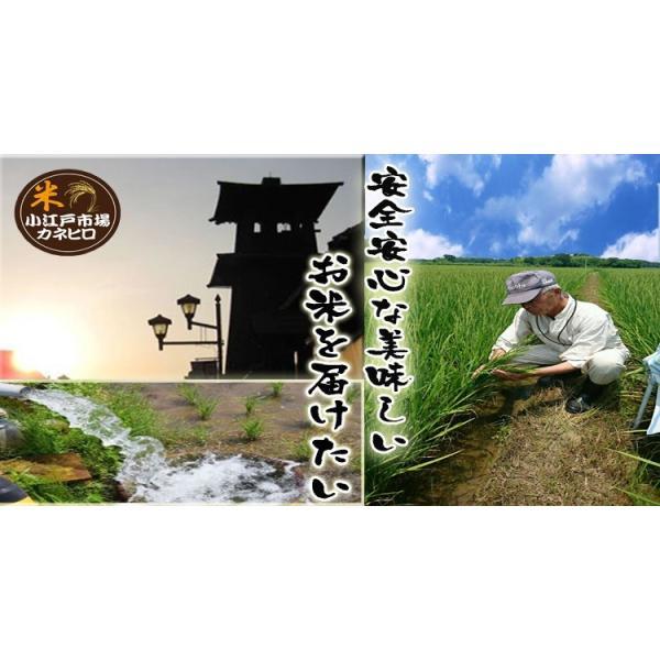 お米  25kg 埼玉でとれたお米 白米(小分け無料)キロ単価約 377円契約農家直送米 |rc-kaneko|04