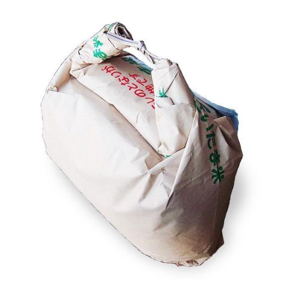 お米 29年産 10kg川越蔵米コシヒカリ 白米 (5kg×2)  契約農家直送米 |rc-kaneko|03