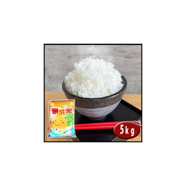無洗米 新米 お米 5kg  米 あすつく 埼玉県産 3年産 送料無料