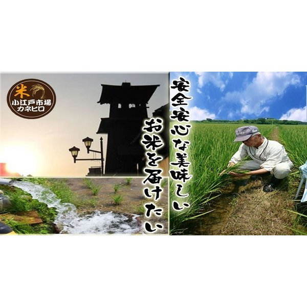 無洗米食べ比べセット  お米 15kg(5kg×3袋)  米 あすつく 埼玉県産 30年産 送料無料|rc-kaneko|03