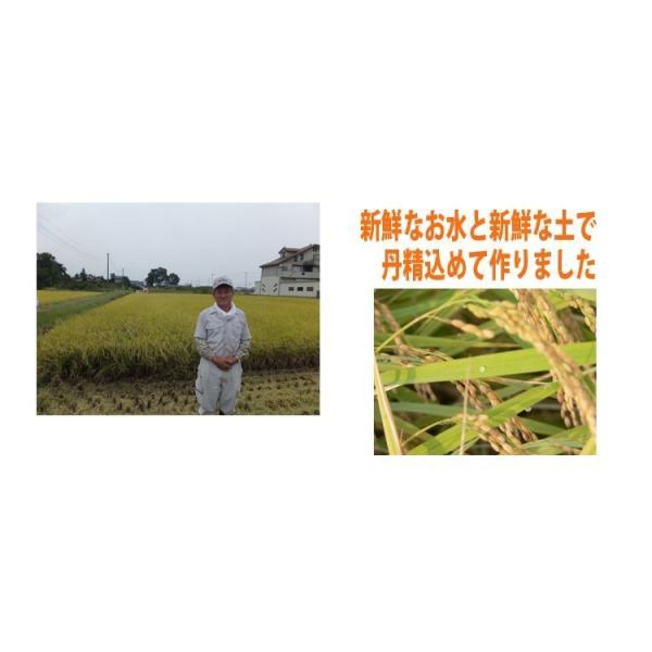 無洗米食べ比べセット  お米 15kg(5kg×3袋)  米 あすつく 埼玉県産 30年産 送料無料|rc-kaneko|07
