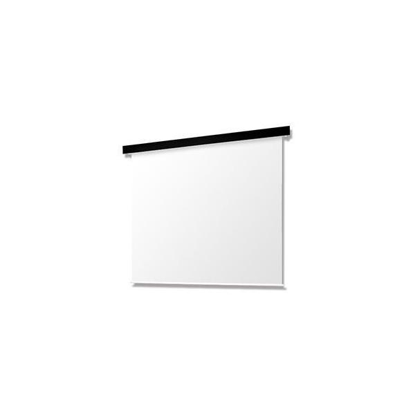オーエス OSCRP Pセレクション電動スクリーン 黒パネル/ターミナル/マスクなし/100型HD SEP-100HN-TSK1-WG103(代引き不可)