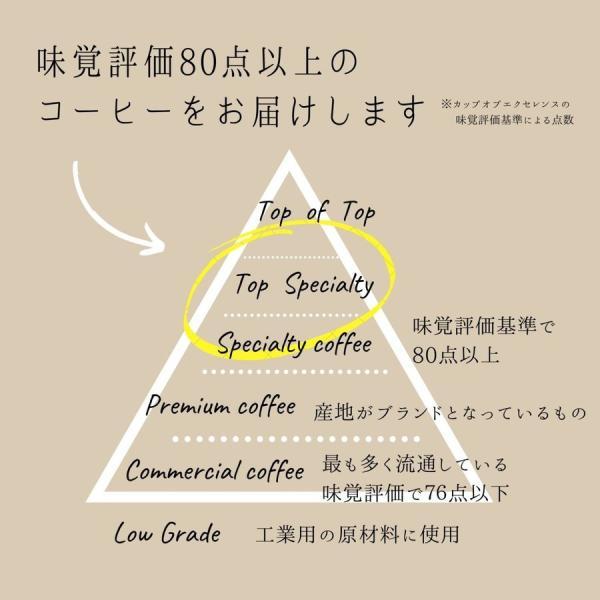 スペシャルティコーヒー3種のギフト エチオピアイルガチェフェ グジ ラム酒風味のグアテマラ サンタクルス|rdc|03