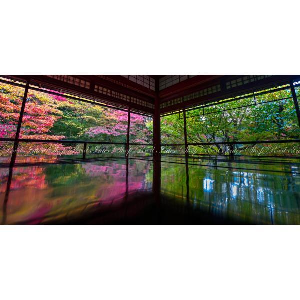 絵画風 壁紙ポスター  -地球の撮り方- 紅葉が反射する床もみじ 京都八瀬の瑠璃光院の秋の特別拝観 パノラマ C-ZJP-054S1 (1152mm×576mm)|real-inter