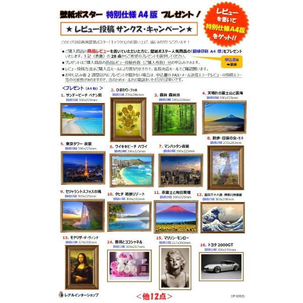 絵画風 壁紙ポスター  さくら 夜桜 大阪 夜景 ライトアップ キャラクロ OSK-005A2 (A2版 594mm×420mm) real-inter 11