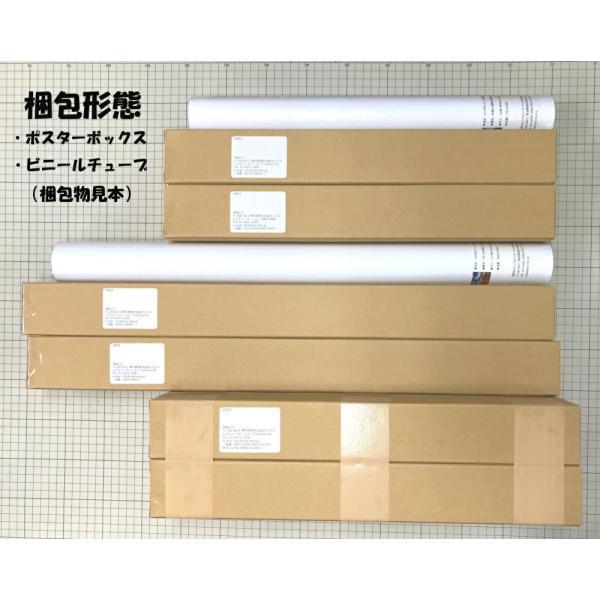 絵画風 壁紙ポスター  さくら 夜桜 大阪 夜景 ライトアップ キャラクロ OSK-005A2 (A2版 594mm×420mm) real-inter 08