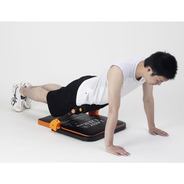 ALINCO(アルインコ) イージーエクサツイン EXG057D (腹筋 脇腹 胸部 太もも 腕部 エクササイズ用) reap 02