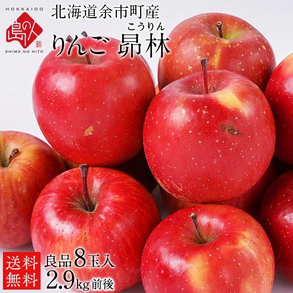 りんご リンゴ 林檎 フルーツ 果物 北海道余市産 2.5kg 訳あり品 昴林 島の人