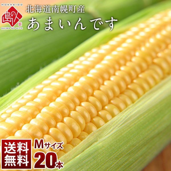 北海道産 とうもろこし あまいんです M(360g前後) 20本(7.2kg前後) とにかく甘い!【送料無料】【産地直送】