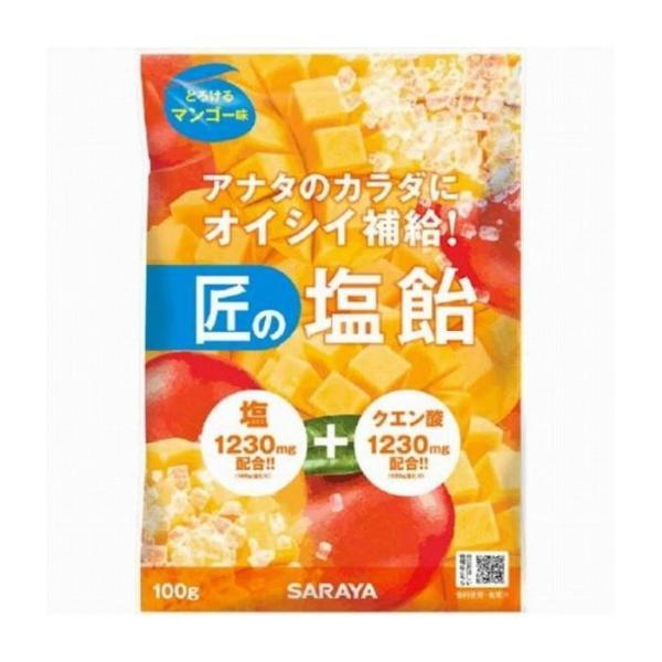 サラヤ 匠の塩飴マンゴー味100g 食品 代引不可