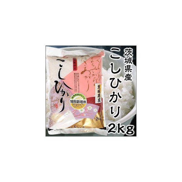 Aランク 令和2年度産 茨城県産 こしひかり 2kg 特別栽培米 新米