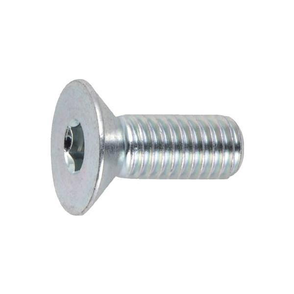 TRUSCO 六角穴付皿ボルト三価 白 サイズM4X12 25本入 B773-0412 ねじ・ボルト・ナット・六角穴付ボルト