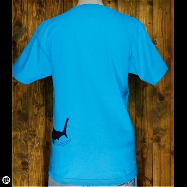Tシャツ メンズ レディース 6.2oz半袖Tシャツ sliders カリビアンブルー|redbros|02