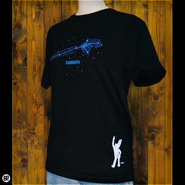 Tシャツ/メンズ/レディース/6.2oz半袖Tシャツ :  星に願いを : ブラック redbros