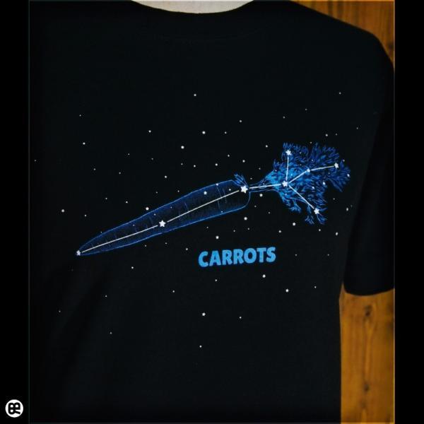 Tシャツ/メンズ/レディース/6.2oz半袖Tシャツ :  星に願いを : ブラック redbros 04