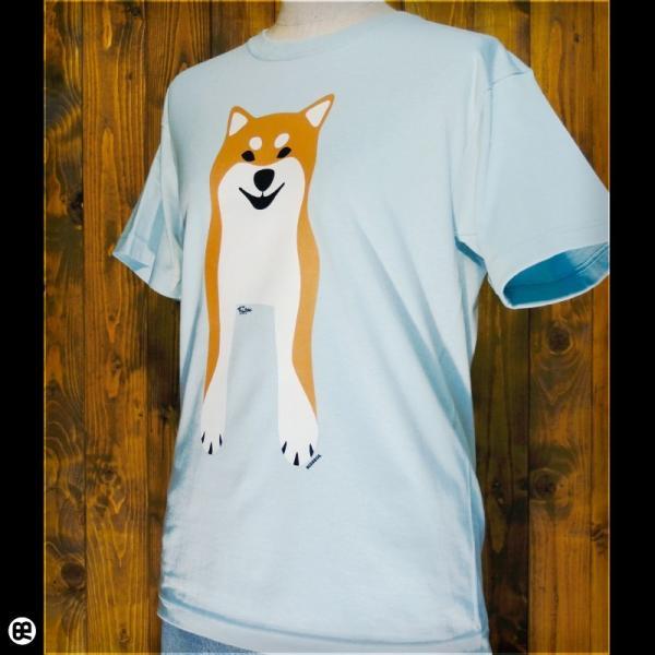 Tシャツ/メンズ/レディース/6.2oz半袖Tシャツ : Shiba Inu(FS) : フロストスカイ|redbros|03
