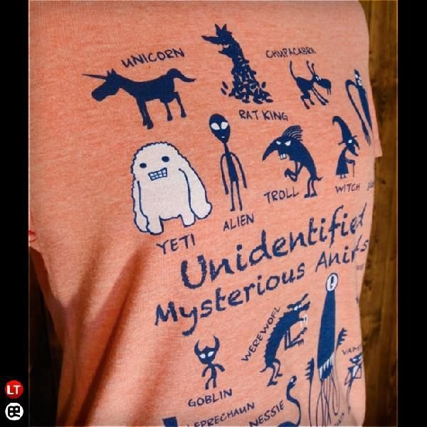 Tシャツ メンズ レディース 4.3oz半袖Tee UMA ヘザーオレンジ|redbros|04