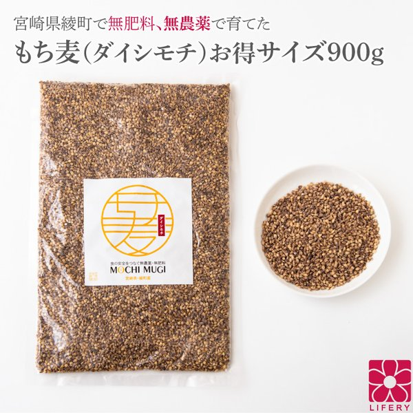 もち麦 お得 900g レジスタントスターチ ダイシモチ 宮崎県産 食物繊維 雑穀 送料無料