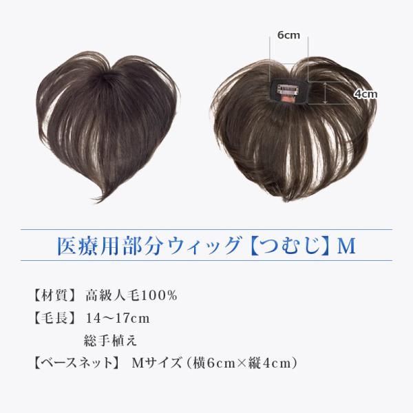 つむじ用部分ウィッグ(かつら)Mサイズ 人毛100% 薄毛白髪|reizvoll|05