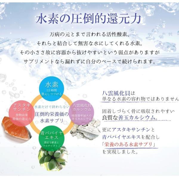 H2八雲風化貝カルシウム水素 水素サプリ カルシウム アスタキサンチン 健康サプリメント 健康サプリ 水素サプリメント relieflife 03