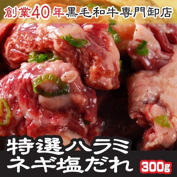 お中元 2021 ギフト 肉 特選ハラミ・サガリ ネギ塩だれ味付き 100g×3パック 計300g 注文時に新鮮カットし味付け
