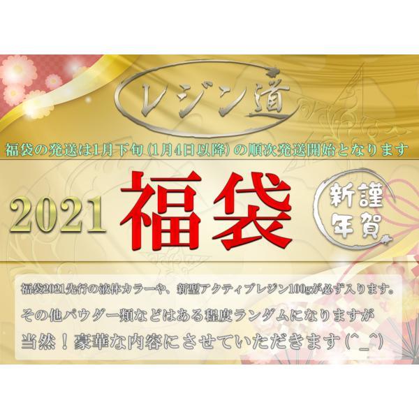 【レジン道の福袋】10000『2021年』【予約販売】(第4弾、補填) resindou47