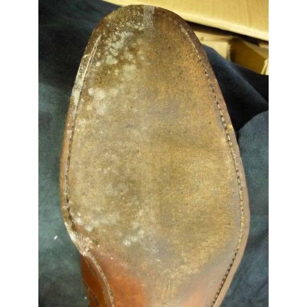 カビ対策に最適 M.モゥブレィ・プレステージ モールドクリーナー 靴 手入れ 予防&除去 防カビ|resources-shoecare|04