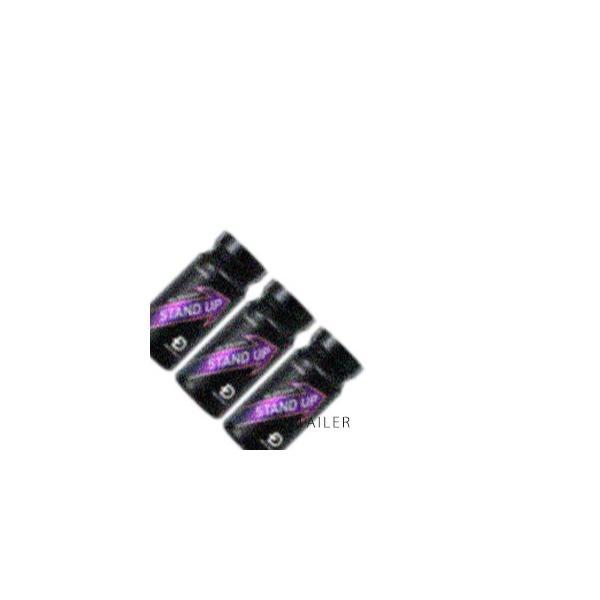 ♪ 3個×210粒(約30日分) ANGFA アンファー メンズヘルス スタンドアップ<男性サポートサプリメント><亜鉛><テストフェン・シトルリン><健康食品>