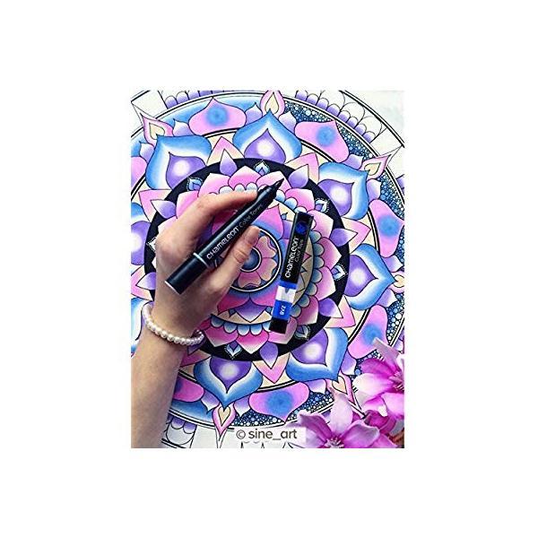 カメレオンペン カラートップ 色のブレンド 5本 EARTH TONES SET(正規品) rexisss 09