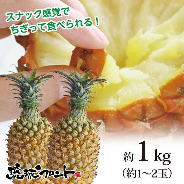 送料無料 沖縄県産 スナックパイン 約1kg 約1〜2玉 沖縄 パイナップル ボゴールパイン お中元 御中元 母の日 ギフト