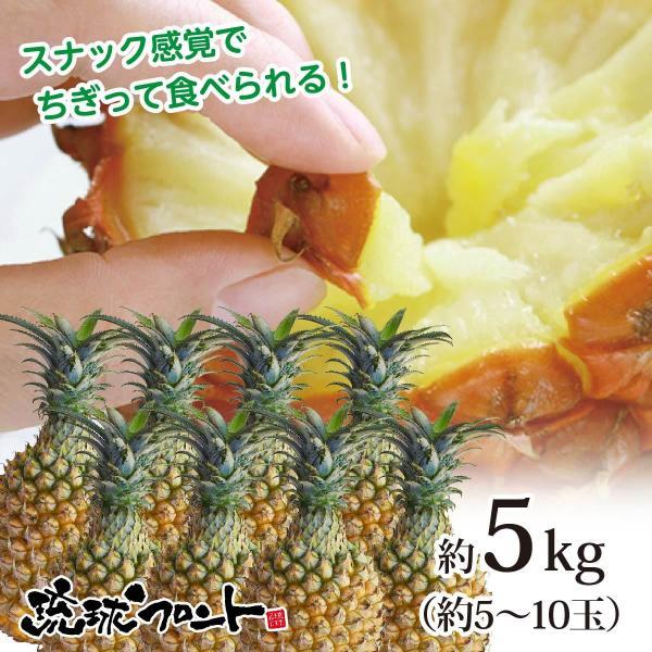 送料無料 沖縄県産 スナックパイン 約5kg 約5〜10玉 沖縄 パイナップル ボゴールパイン お中元 御中元 母の日 ギフト