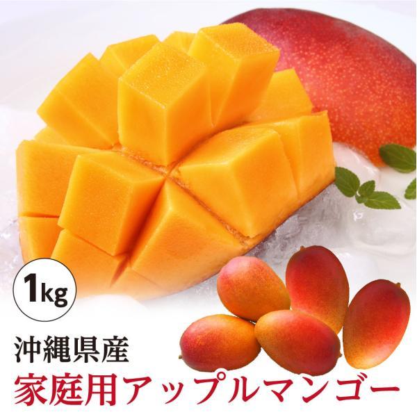 送料無料 沖縄県産 アップルマンゴー 家庭用 約1kg 2玉〜4玉 沖縄 マンゴー 訳あり