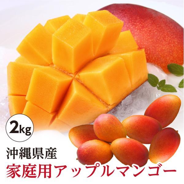 送料無料 沖縄県産 アップルマンゴー 家庭用 約2kg 4玉〜9玉 沖縄 マンゴー 訳あり