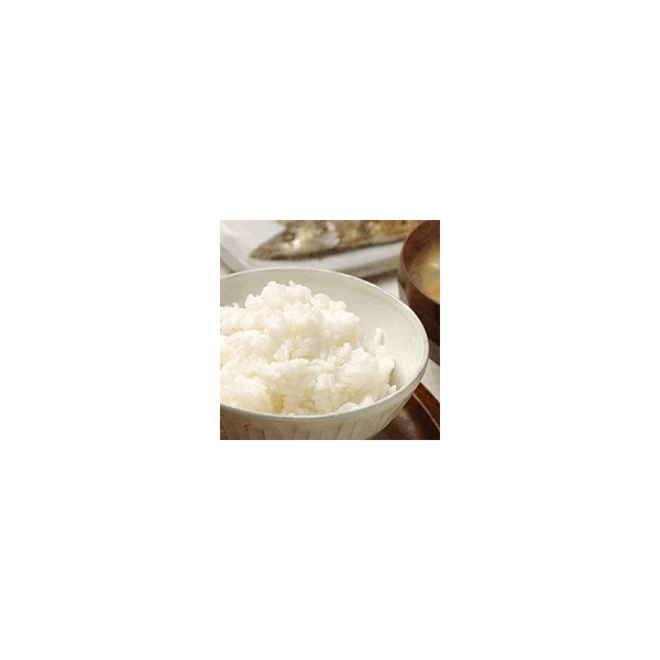つや姫 10kg 白米 5kg×2 山形県産庄内産 特A 特別栽培米 送料無料 令和2年産