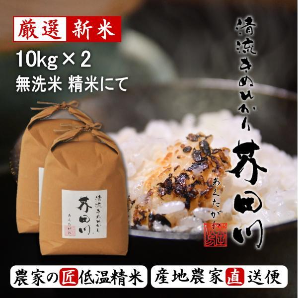 新米 お米 10kg×2 20kg 無洗米にて精米 清流きぬひかり芥田川 農家直送 送料無料 米農家の低温精米