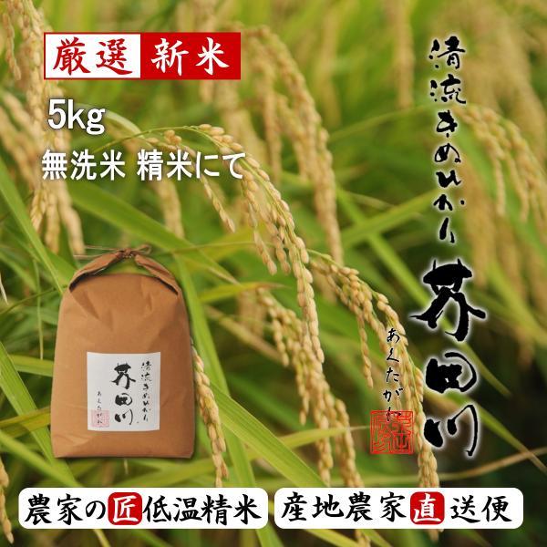 令和3年秋 新米 予約生産枠 お米 5kg 無洗米 精米 送料無料 清流きぬひかり芥田川 農家直送 農家の低温精米