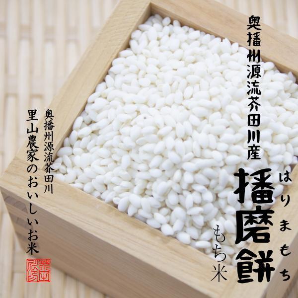 令和3年度 予約生産 新もち 餅 もち米 5kg 奥播州源流芥田川産 播磨餅 はりまもち 送料無料