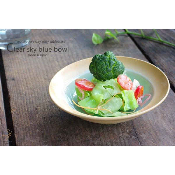 和食器 トルコブルーに吸い込まれそうな浅瀬水色の平鉢 和食器 おしゃれ ボウル 前菜 サラダ 小鉢 和皿 丸皿 美濃焼 小鉢 釉薬|ricebowl|05