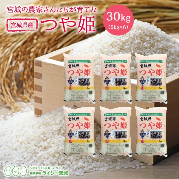 米 米 30kg 安い つや姫 令和2年産 小分け 宮城県産 送料無料 精白米