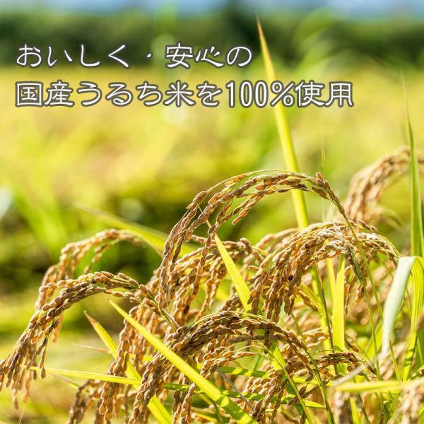 非常食 アルファ米 非常食セット 5年保存 防災セット 防災グッズ マジックライス 9種 お試し用コンプリートセット|ring-g|02