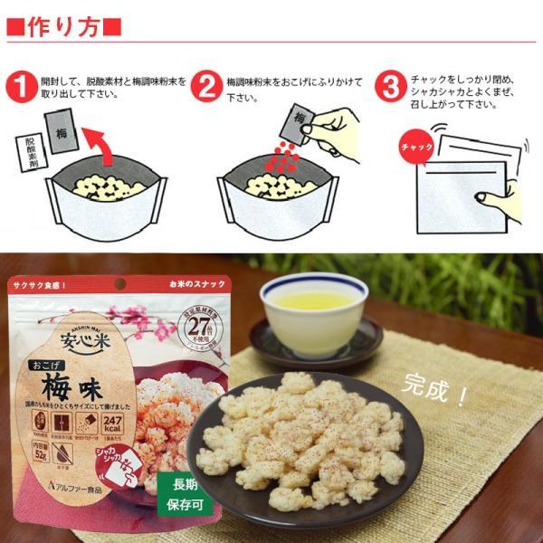 非常食 保存食 お菓子 5年保存 安心米おこげ 梅味30袋セット ring-g 02