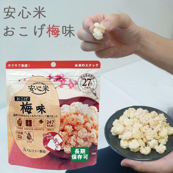 非常食 保存食 お菓子 5年保存 安心米おこげ 梅味30袋セット ring-g 03