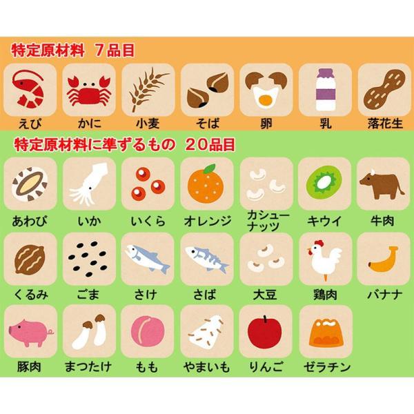 非常食 保存食 お菓子 5年保存 安心米おこげ 梅味30袋セット ring-g 04