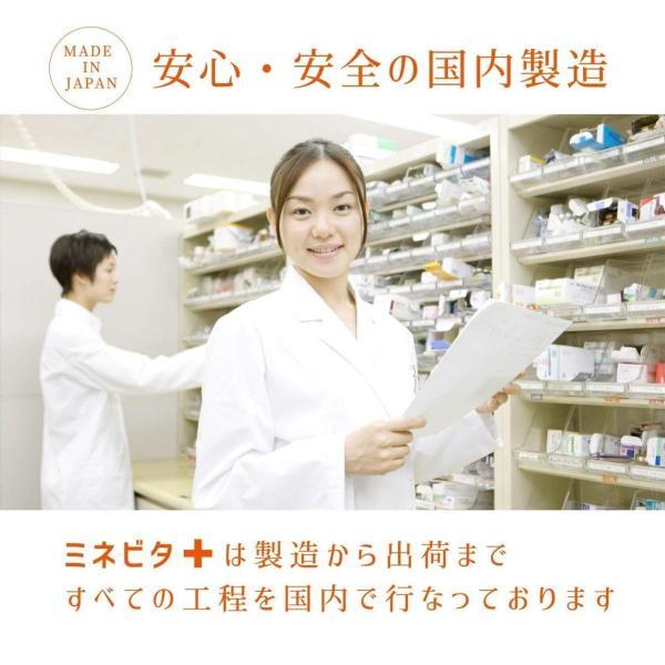 マルチビタミン サプリメント ミネラル ビタミン ヘルスケア ベース サプリ アミノ酸 BCAA 健康 サポート ミネビタ+ 120粒 60日分|rise-one|06