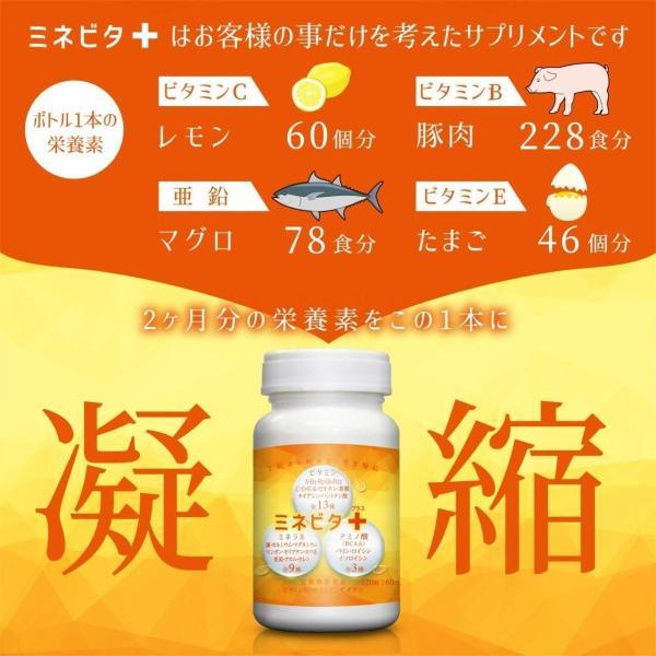 マルチビタミン サプリメント ミネラル ビタミン ヘルスケア ベース サプリ アミノ酸 BCAA 健康 サポート ミネビタ+ 120粒 60日分|rise-one|02