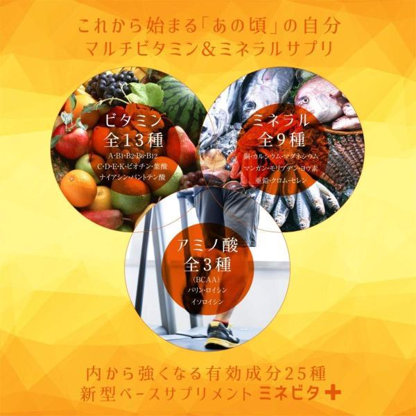 マルチビタミン サプリメント ミネラル ビタミン ヘルスケア ベース サプリ アミノ酸 BCAA 健康 サポート ミネビタ+ 120粒 60日分|rise-one|03